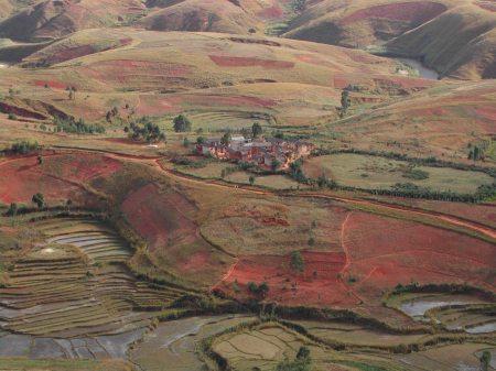 Tsarahafatra, near the road to Ambohimasina, west of Betafo
