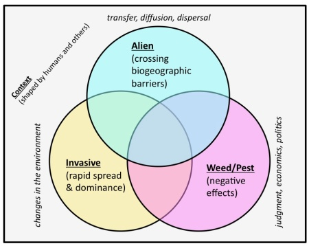 The three components often used in defining invasive species. Different definitions emphasise different components.  Source:  Kull et al. 2014 (supplementary online material)
